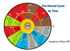 24 Hour Diurnal Cycle
