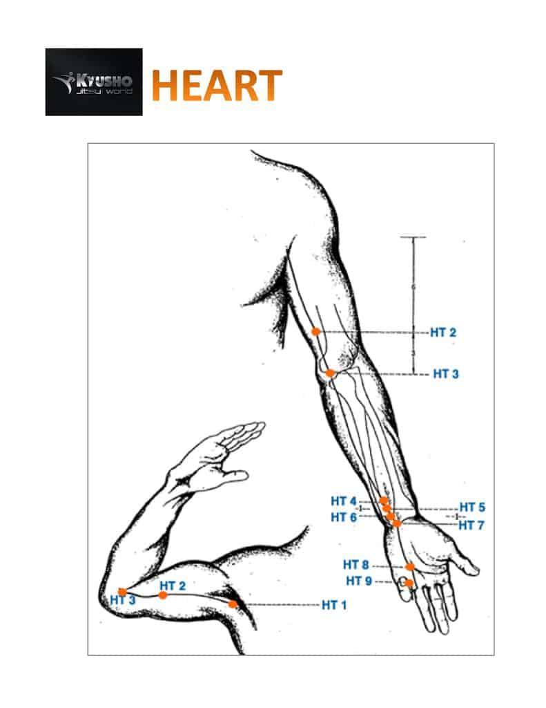 Heart Meridian